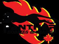 PantherHobbies-Logo(156px)